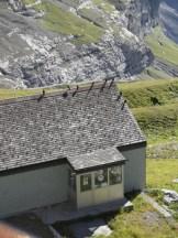 jungfraujoch-top-of-europe-359