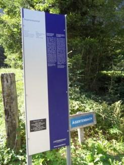murren-stechelberg-313
