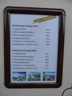 wilderswil-schynige-platte-12
