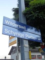 wilderswil-schynige-platte-15