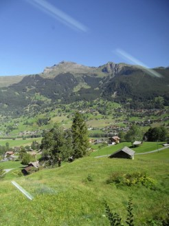 grindelwald-first-28