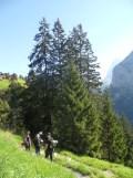 murren-stechelberg-85