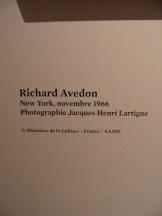 avedon-a-la-bnf-115