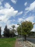 Petah Tikva - Tel Aviv (8)