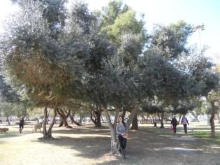 3. Autour de Nachlat Benyamin (22)