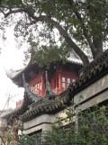 Autour de Yuyuan (118)