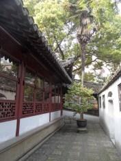 Autour de Yuyuan (99)