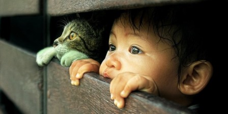 Why Your Kids Should Keep a Pet