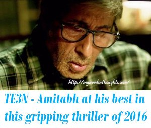TE3N review