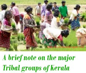 Tribal groups of Kerala