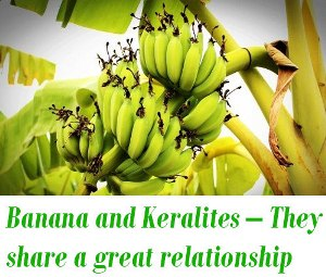 Banana and Kerala