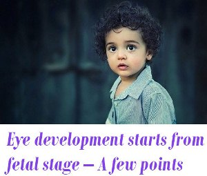 Eye development starts from fetal stage