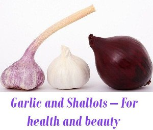 Garlic and Shallots health benefits
