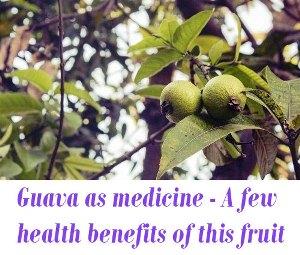 Guava as medicine