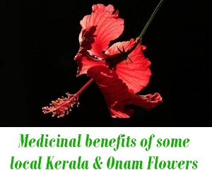 local Kerala flowers and Onam Flowers