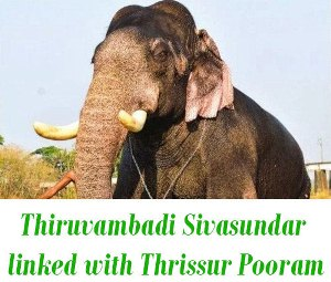 Thiruvambadi Sivasundar death