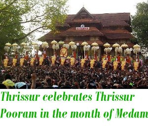 Thrissur Pooram medam