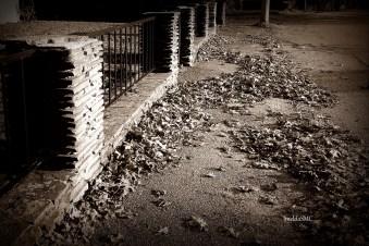 fence sepia
