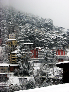 Winter in Shimla.