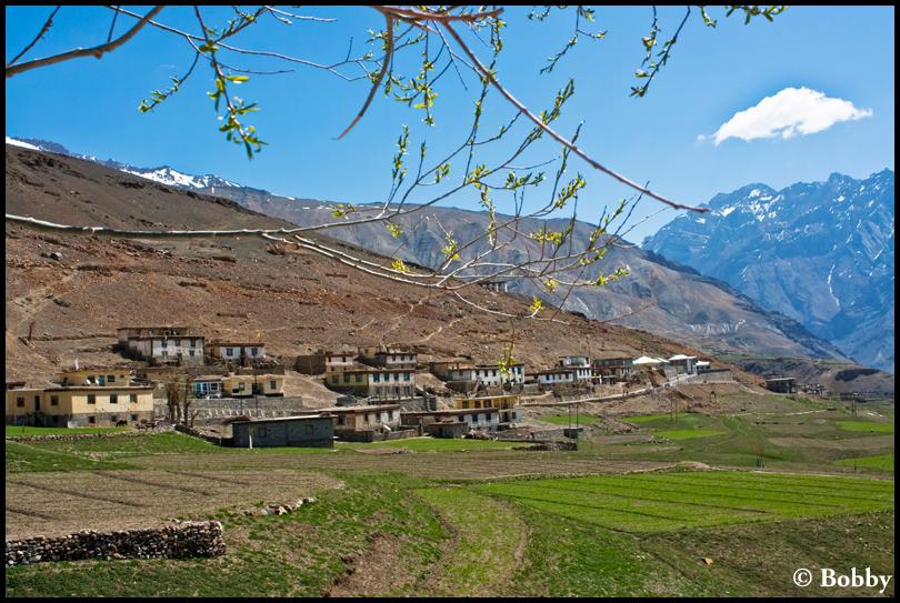Gungri Village.