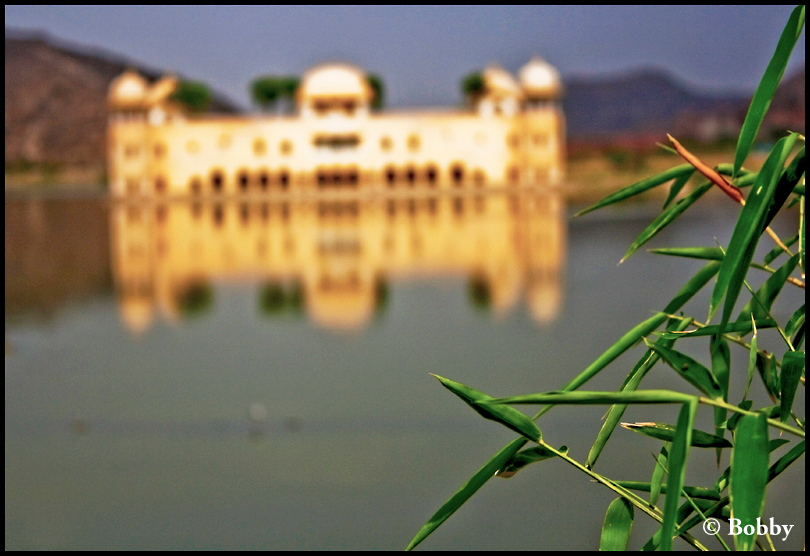Out of Focus - Jal Mahal