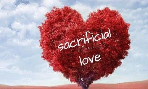 SACRIFICIAL LOVE - JANNA ONYEMAOBI 1