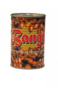 A RECIPE FOR BANGA RICE 2