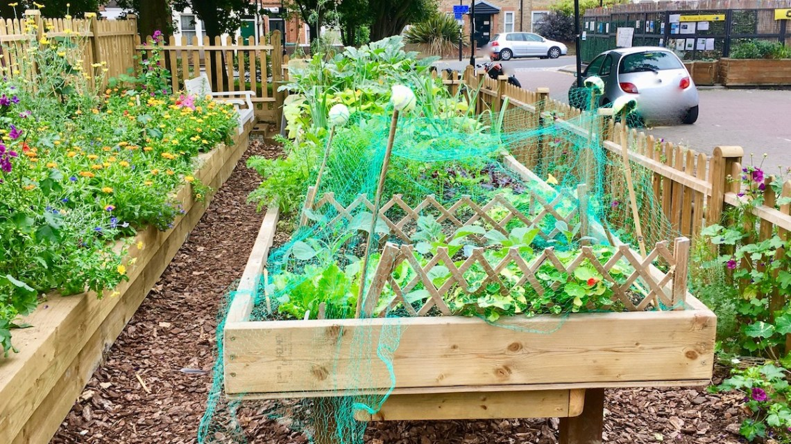 Help the Community Kitchen Garden Project