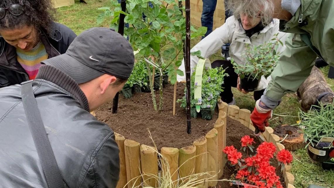 Planting the seeds: Workshop #1