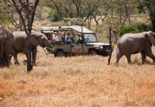 Kenyan conservation reserves