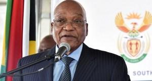 Jaco Zuma