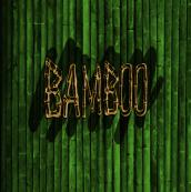 Bamboo Clothing