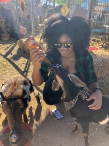 feeding-rescue-goat-wheelchair-natural-hair