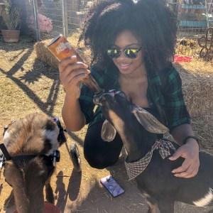 feeding-rescue-goat-wheelchair-natural-hair