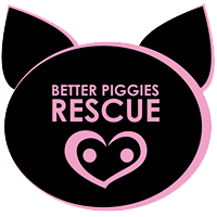 better-piggies-logo