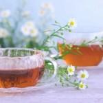 因島産の杜仲茶がおすすめ!人気の理由とは?