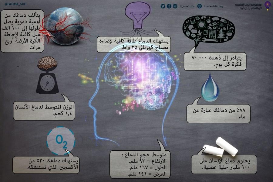 تصميم وترجمة فاطمة الصفيان