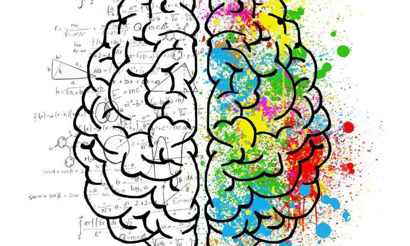 ترتيب الأفكار في رأسك