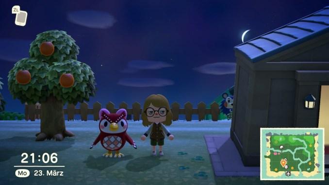 Dieses Bild zeigt Eufemia bei Nacht in Animal Crossing: New Horizons.