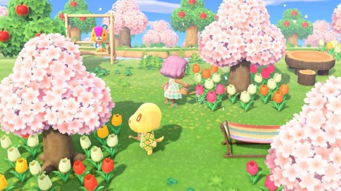 Das Bild zeigt die Kirschblüte. Die normalen Bäume haben sich rosa verfärbt.