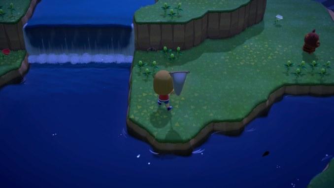 Dieses Bild zeigt wie ich mit einer Vogelspinne auf einer Meilen-Insel kämpfe!
