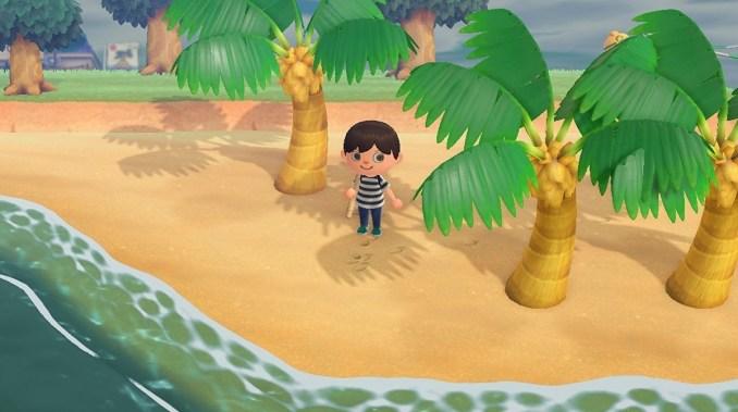 """Das Bild zeigt einen Charakter in """"Animal Crossing New Horizons"""", welcher am Stand zwischen seinen Palmen steht. Palmen sind einer der drei möglichen Baumtypen."""
