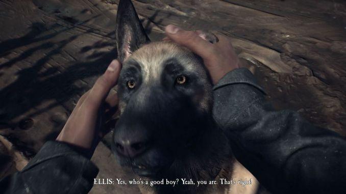 Das Bild zeigt den Schäferhund Bullet.