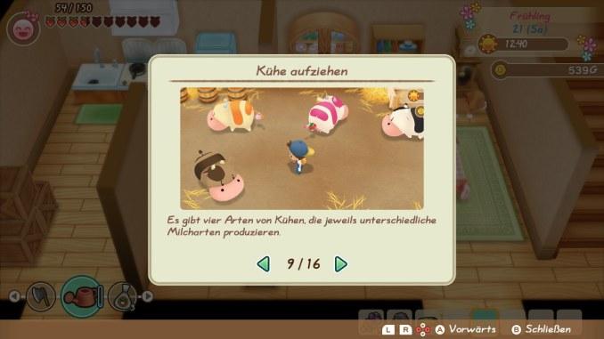 """Das Bild zeigt die vier unterschiedlichen Arten von Kühen in """"Story of Seasons: Friends of Mineral Town""""."""