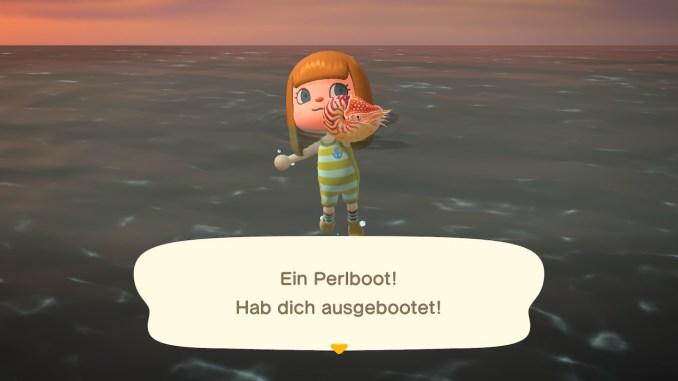 """Das Bild zeigt ein Perlboot – ein Tierchen in """"Animal Crossing"""", welches nur noch im Juni fangbar ist."""