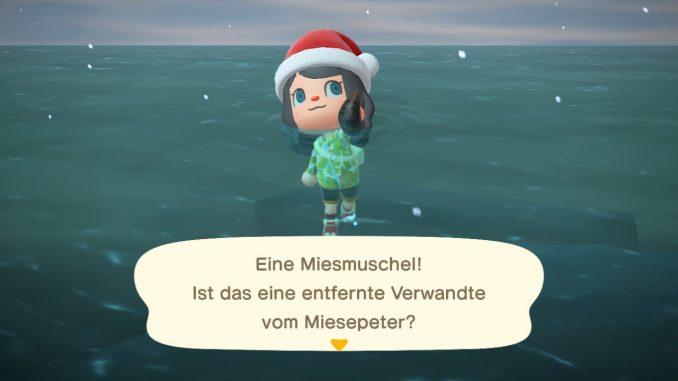 """Das Bild zeigt die Miesmuschel – ein Tierchen in """"Animal Crossing"""", welches nur noch im Dezember fangbar ist."""