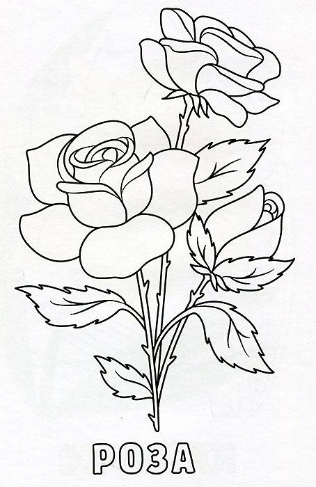 Цветок роза раскраска для детей осенние Нарисовать букет