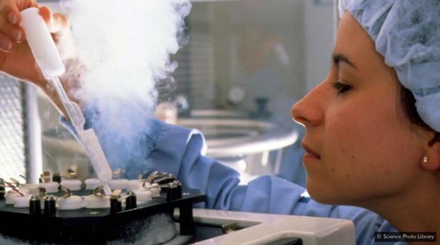 生育治療和冷凍卵子的能力使更多的女性可以比過去更晚生育