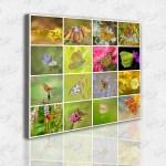 Renkli Kelebekler Kolaj – Kanvas Tablo