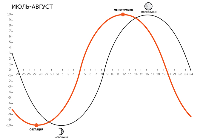 Женский цикл